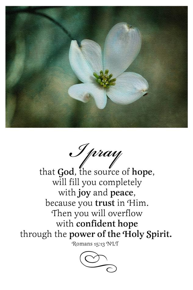 Romans 15:13 NLT