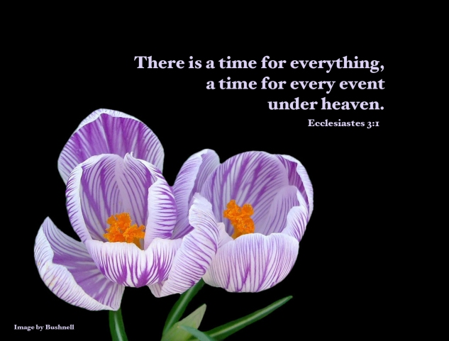 A Time for Every Event Under Heaven