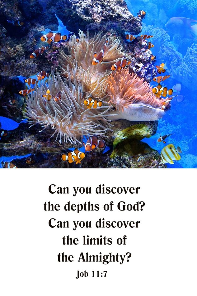 The Depths of God