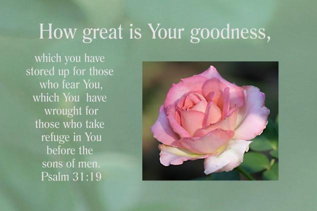 Psalm 31:19