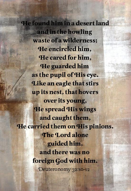 Deut 32:10-12